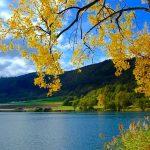Wandern im Herbst: Die besten Tipps